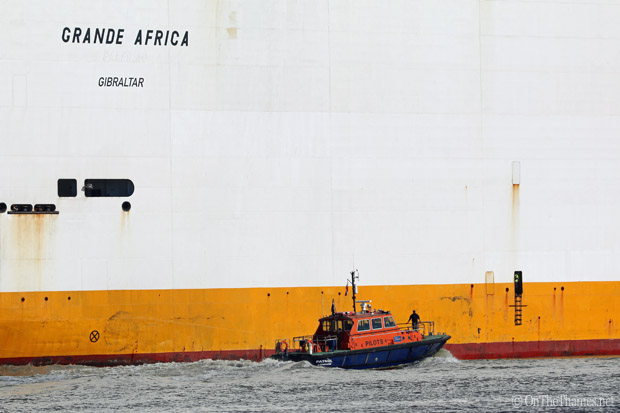 onthethames_grandeafrica4